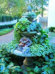 44-Know All About Garden Ornaments, Plants, Garden Center And Succulents In Melbourne