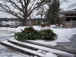 44-Landscape Maintenance In The Winter